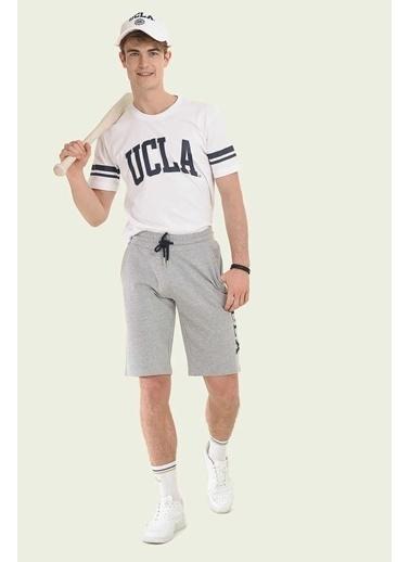 UCLA Şort Gri